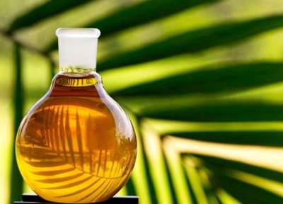 Диетологи рассказали, почему вредно пальмовое масло