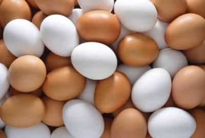 Медики объяснили, как куриные яйца влияют на организм человека