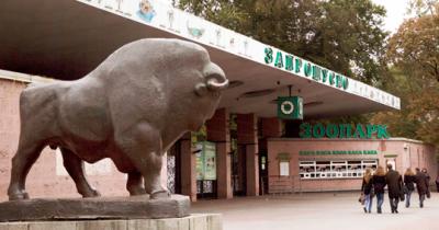 Реконструкция киевского зоопарка: что изменилось