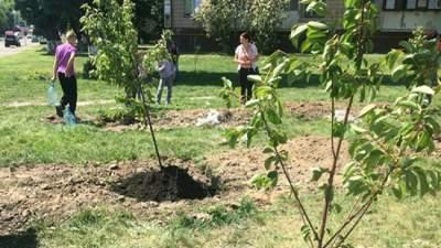 В Киеве свалку превратили в вишневый сад