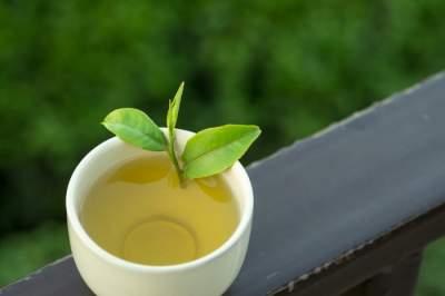 Названы главные советы по употреблению зеленого чая