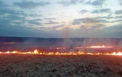 В Украине прогнозируют высокий уровень пожарной опасности