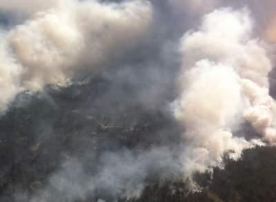 Лесной пожар на Херсонщине разрастается