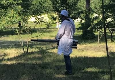 Парки Киева обрабатывают против клещей
