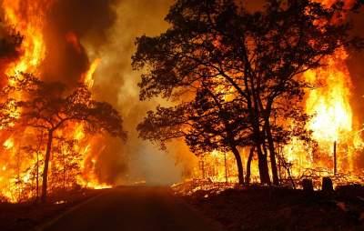 Украинцев призвали не провоцировать пожары