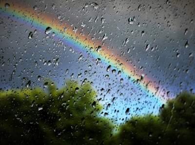 По всей Украине пройдут грозовые дожди