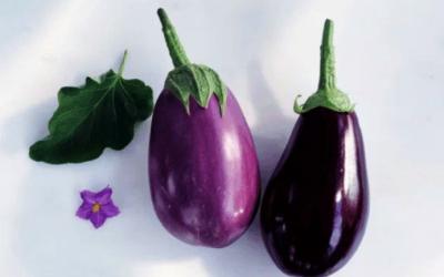 Назван овощ, который способен снизить уровень холестерина