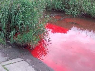 В Запорожье река окрасилась в ярко-красный цвет