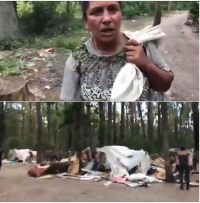 Соцсети бурно обсуждают разгром лагеря ромов в Киеве