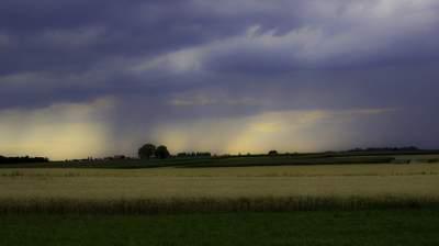 Дожди и грозы: Украину накроет мощный циклон