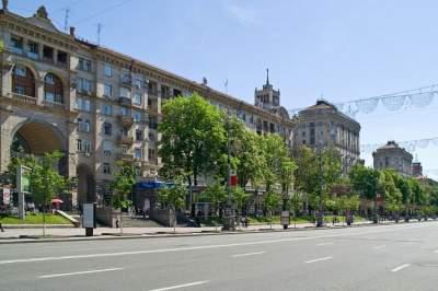 Киевляне могут сами выбрать, какие деревья высадить на Крещатике