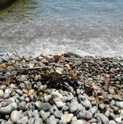 В Сети показали загрязненные мазутом крымские пляжи
