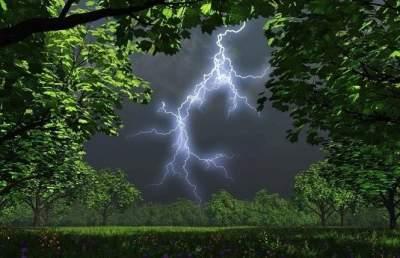 Грозы и шквалы: в Украине объявлено штормовое предупреждение