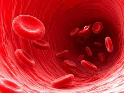 Медики подсказали, как очистить кровь от никотина