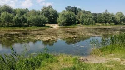 Одно из киевских озер превратили в свалку
