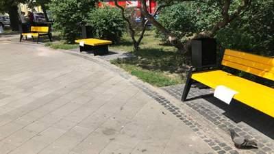 Киевские коммунальщики испортили дизайнерские лавочки