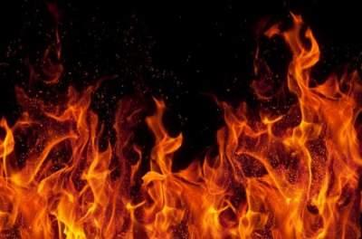 Украинцев предупредили о высшем уровне пожарной опасности и назвали самые уязвимые регионы