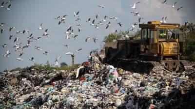 Под Киевом реконструируют мусорный полигон