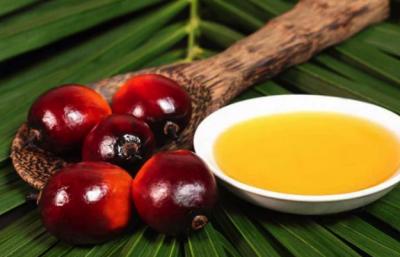 Медики рассказали, почему пальмовое масло вредно для мужчин