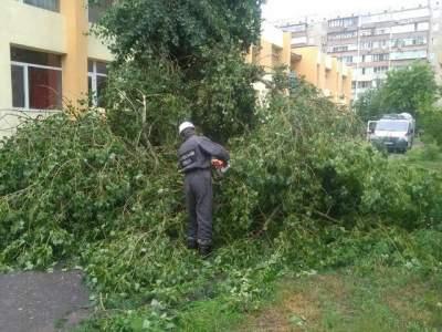 В Сети показали, что натворила непогода в Киеве