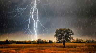 В Киеве установлен метеорологический рекорд