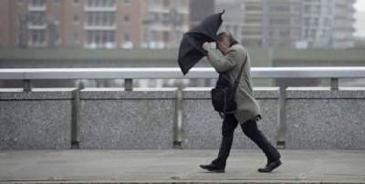 Жителей Киева предупредили о сильном ветре