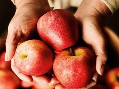 Яблочная кожура содержит «лекарство» от старости