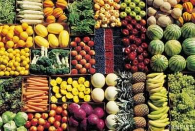 Названы основные достоинства и недостатки вегетарианства