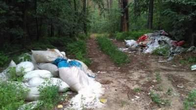 В Киеве Дарницкий лес превратили в свалку