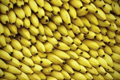 Названы главные полезные свойства бананов