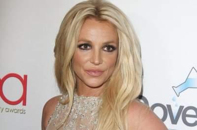 Бритни Спирс покрасовалась в провокационном наряде