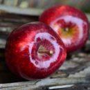 Назван один из самых полезных фруктов для здоровья кишечника