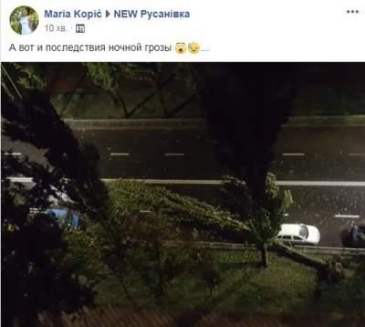 Киевляне обсуждают очередной потоп в городе