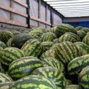 Киевляне могут не дождаться херсонских арбузов