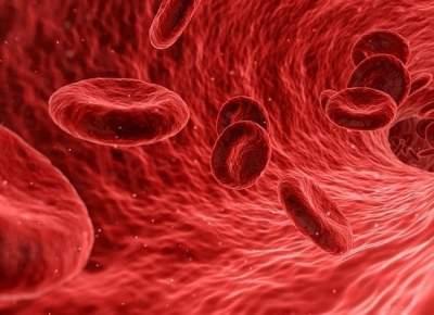 Придуман способ менять группу крови