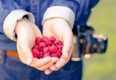Врачи назвали ягоду, «убивающую» раковые клетки