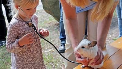 Киевский зоопарк проведет необычную программу для детей