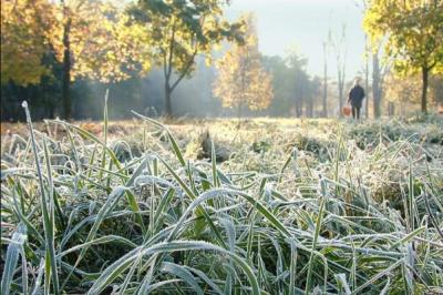 Синоптики сообщили, когда в Украину придут первые заморозки