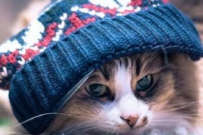 В Киеве резко похолодает