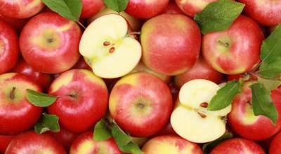 Медики рассказали о неожиданных свойствах яблок