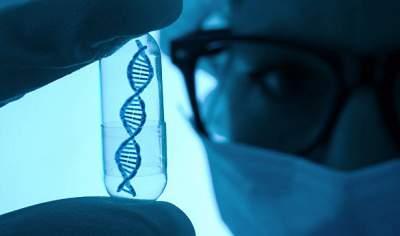 Биологи раскрыли причину развития атеросклероза