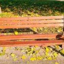 В Киеве вандалы испортили таблички и лавки в двух парках