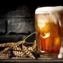 Врачи подсказали, какой алкогольный напиток защитит от остеопороза