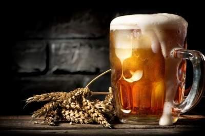 Назван алкогольный напиток, существенно продлевающий жизнь