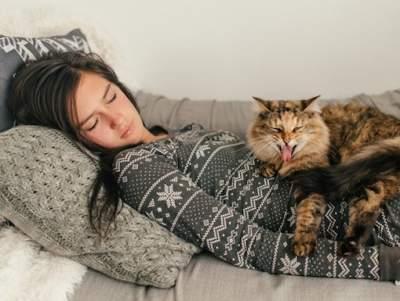 Ученые перечислили лечебные свойства кошек
