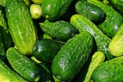 Врачи подсказали, какой овощ может защитить от слабоумия