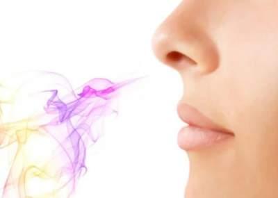 Ученые создали имплант для восстановления нюха