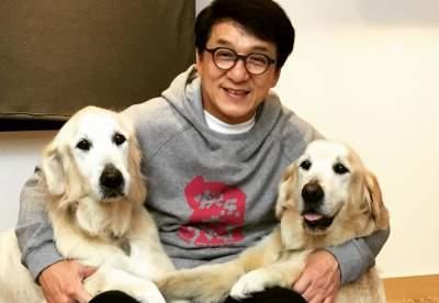 Джеки Чан рассказал о постыдных фактах из своей биографии