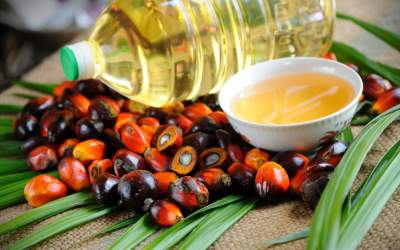 Медики рассказали о рисках употребления пальмового масла