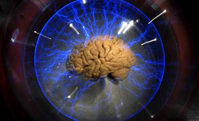 Медики рассказали, как ускорить работу мозга